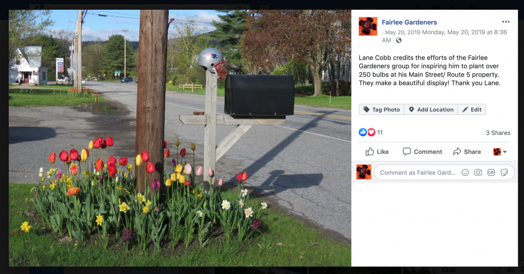 screenshotof Facebook post with picof Lane Cobb's tulipdisplay