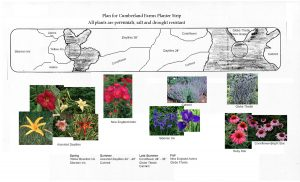 Cumberland Farms Planting Plan