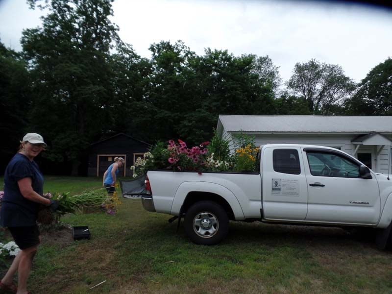 Loading the truck with plants
