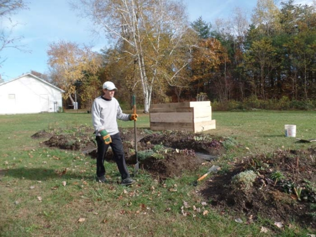 Preparing to set the assembled hemlock borders around the beds.